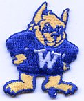 WEBSTER EMBROIDERED APPLIQUE